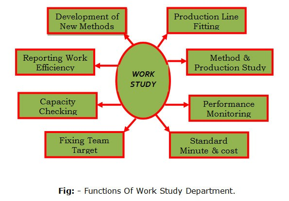 function-of-work-study