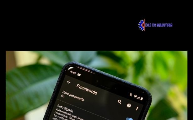 How to see passwords saved on Android